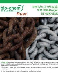 pdf-biochem-rust